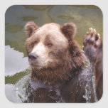 Bathing Brown Bear  Stickers