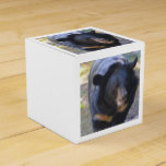Black Spectacled Bear Favor Box