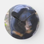 Black Spectacled Bear Round Clock