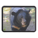 Black Spectacled Bear Tow Hitch Cover