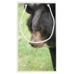 Cute Black Bear Small Gift Bag