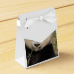 Cute Giant Panda Bear Favor Box