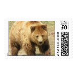Grizzly Bear Postal Stamp