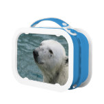 Polar Bear Profile Lunch Box